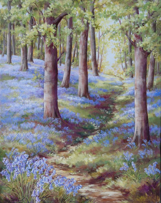 Bluebells of England