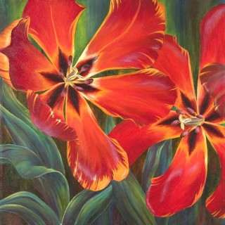 Dance of the Tulips