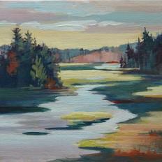 Haliburton Wetland