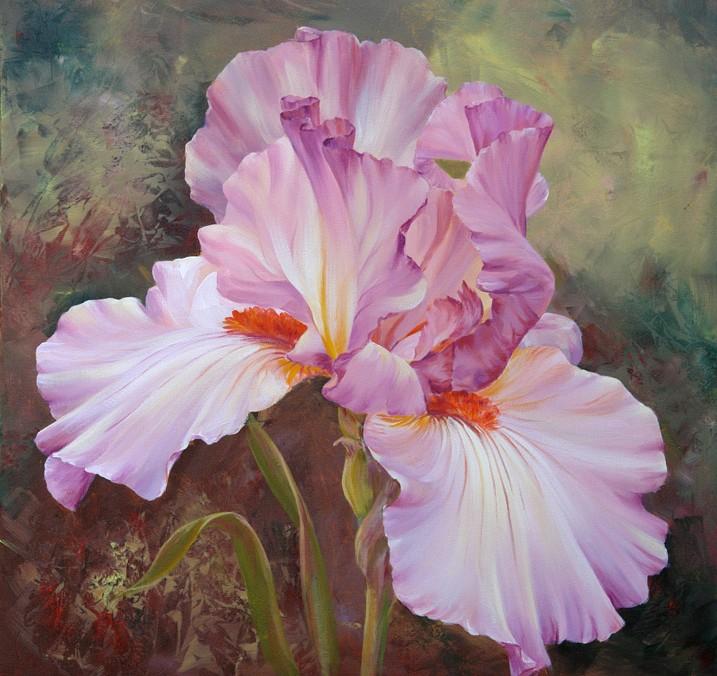 Iris Hues