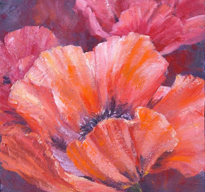 Poppy Texture