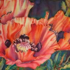 Silk Poppies