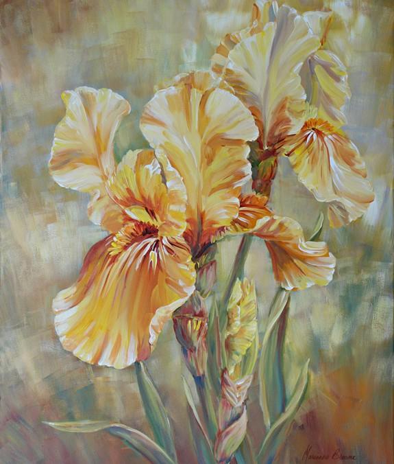 Sun Iris