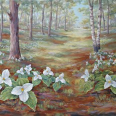 Trillium Woods III