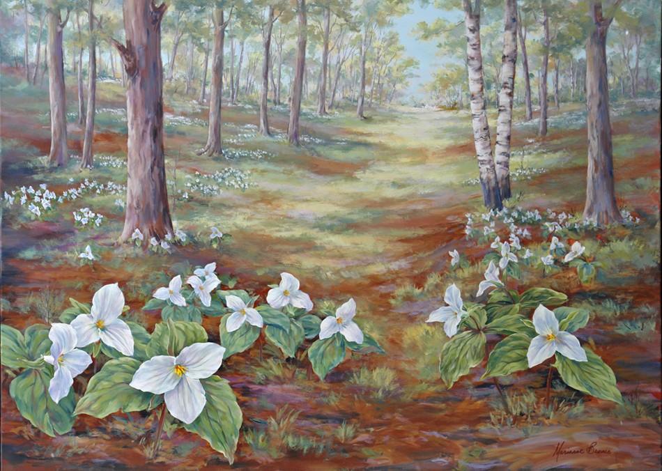 Trillium Woods III