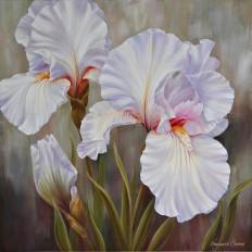 White Irises