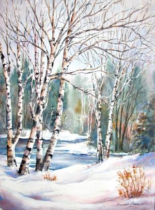 Birch River In Winter