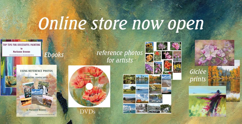 online store ad v3