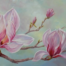 Pink Magnolias