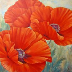 Three Poppies